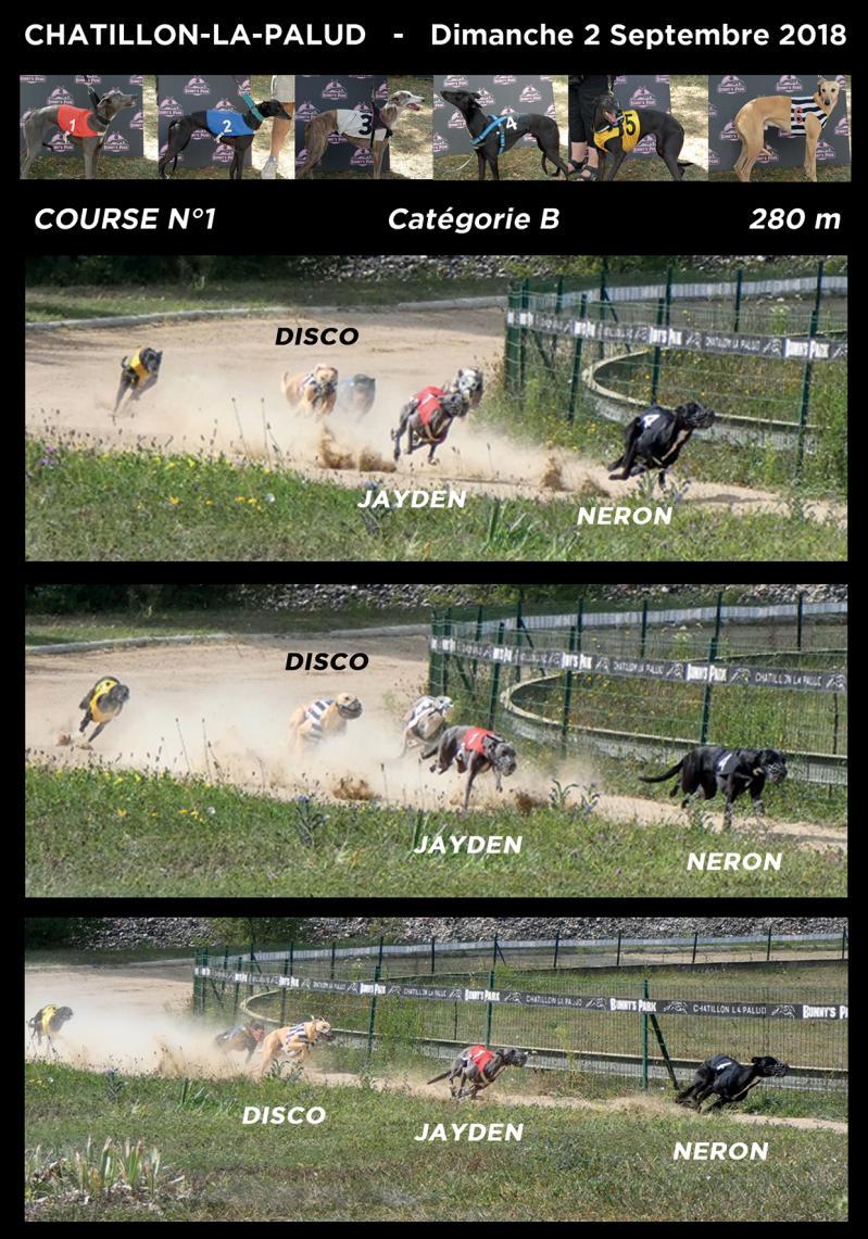 Course 34