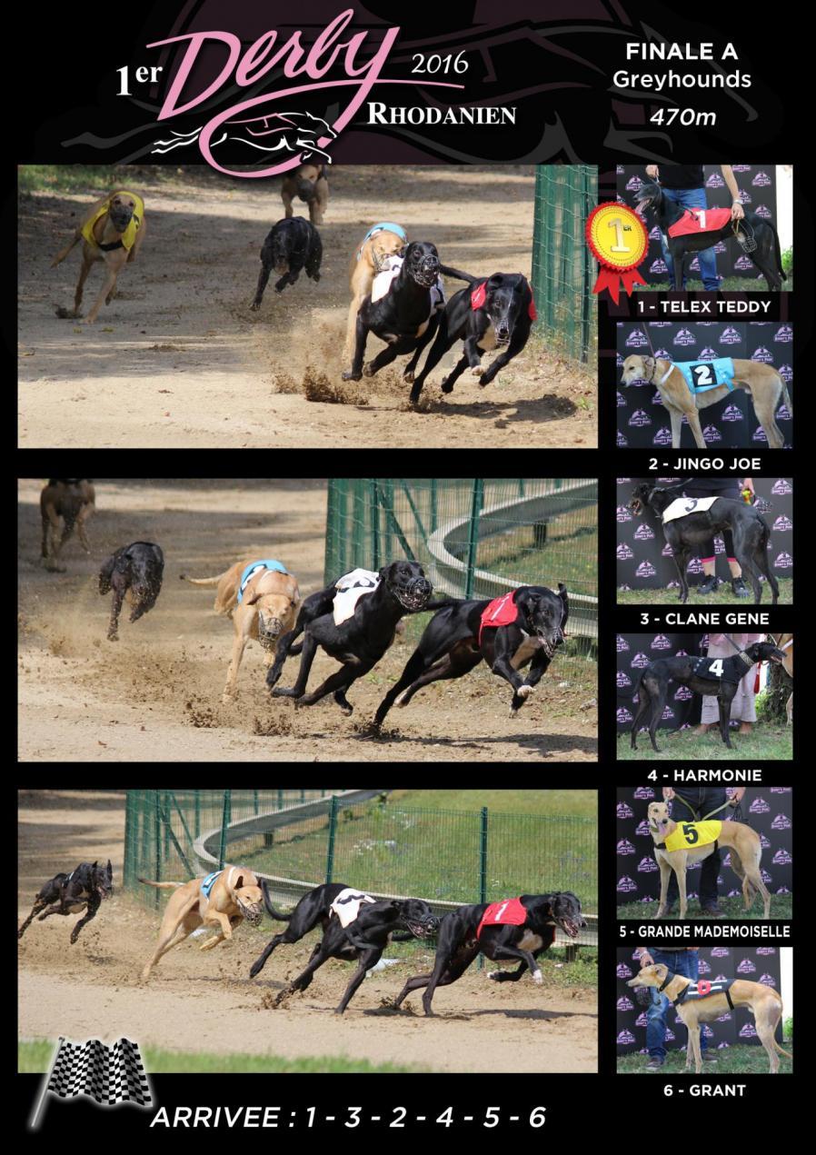 Derby finale greys
