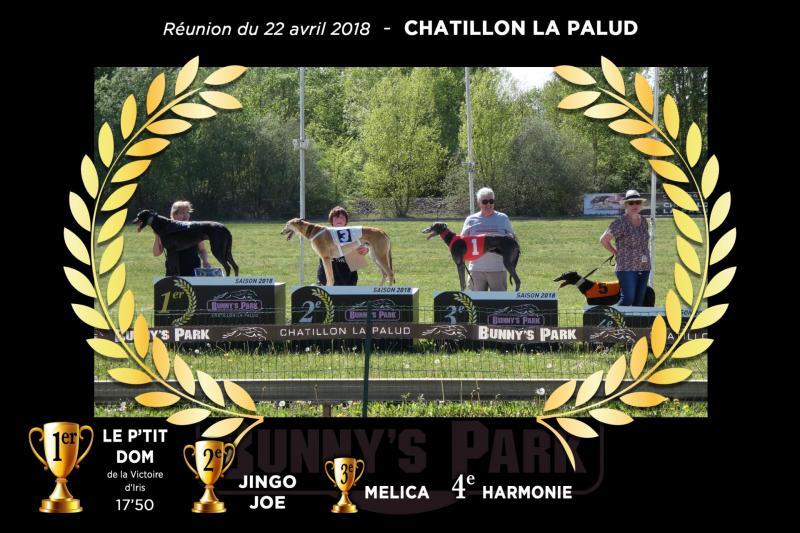 Montage podium course 5
