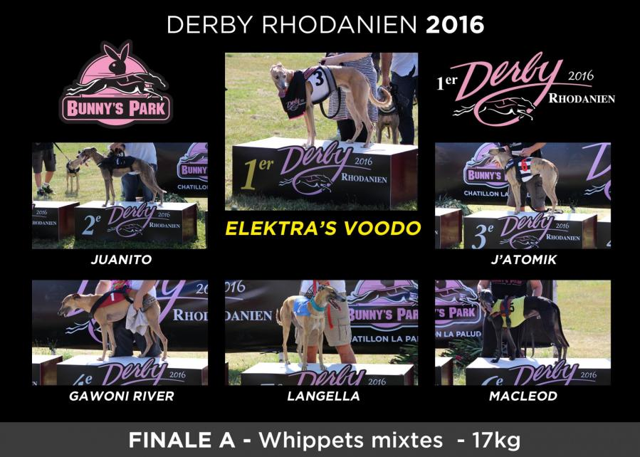 Podiums whip male 17kg
