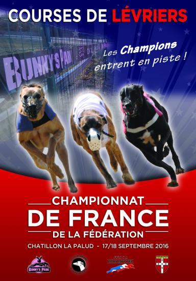 Web visuel championnat 2016 ok